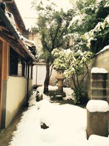 snowing2